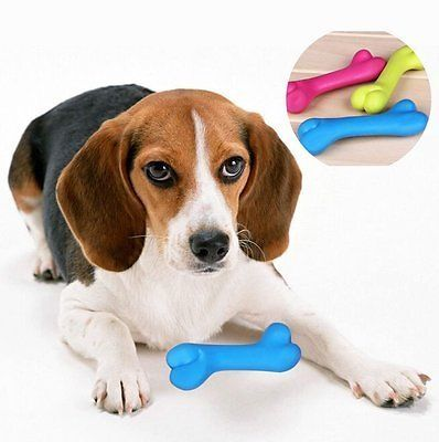 cool Pet Dog Puppy Cat Teeth Healthy Rubber Bone Training Chews Play Funny Fetch Toys - For Sale