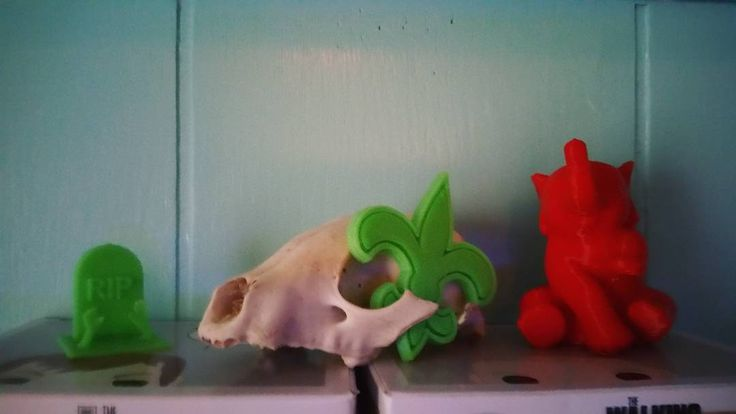 Something we liked from Instagram! All the things my dad has made me on his #3dprinter (minus the possum skull) that thing is awesome! #cool #cute #elephant #fluerdelis #saints #rip #grave #zombies by anne_laura4995 check us out: http://bit.ly/1KyLetq