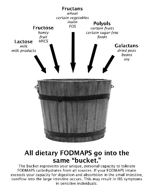 Info about low FODMAPs diet http://blog.kitchentherapy.us/2010/01/wheat-free-gluten-free-fodmaps-free-ibs-free-at-last-book-giveaway/