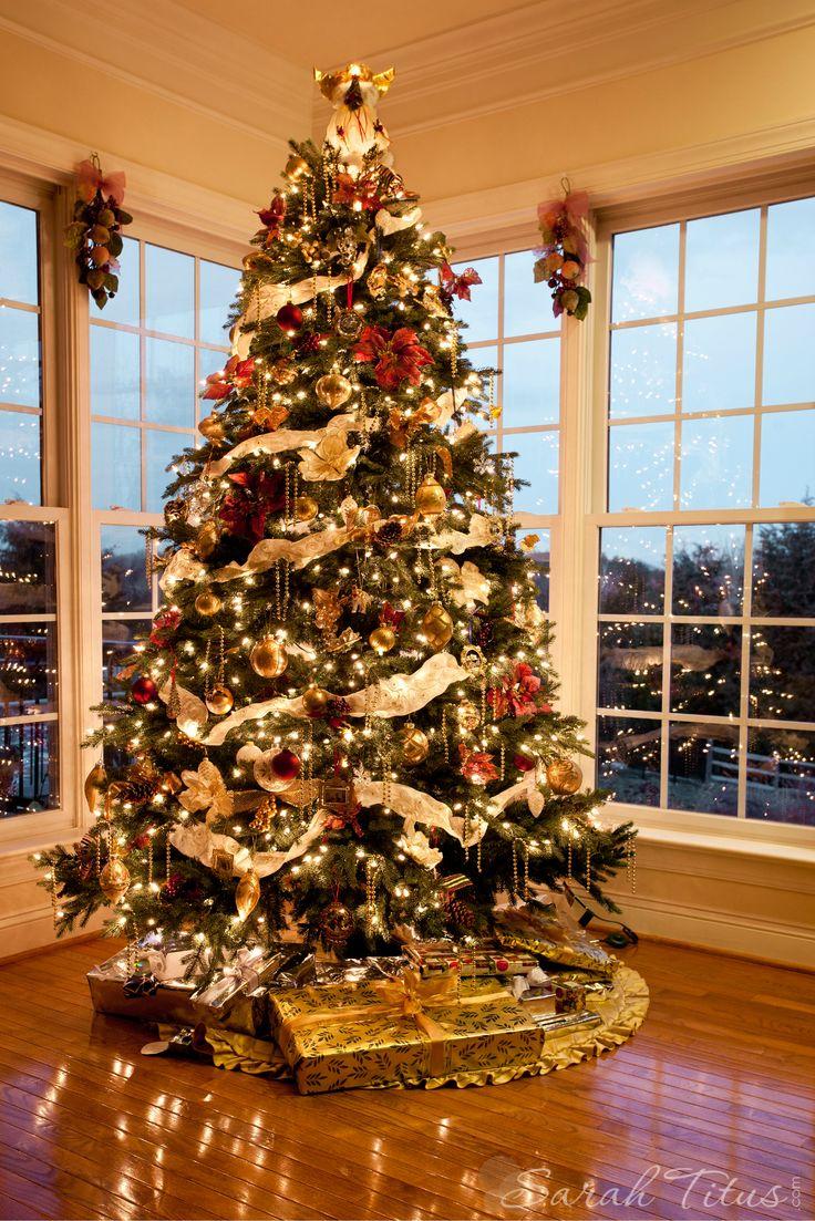 Beautiful holiday Christmas tree by window