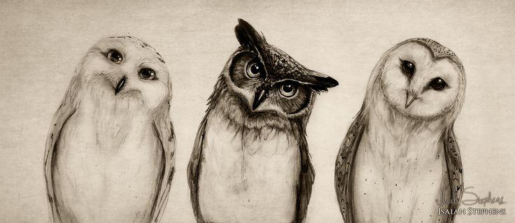 The Owls Three by IsaiahStephens.deviantart.com on @deviantART