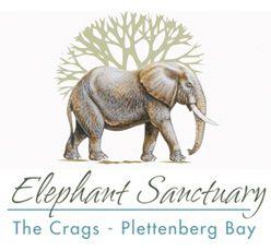 The Elephant Sanctuary, The Crags, Plettenberg Bay