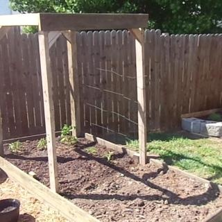 How to build a raised garden bed cheap courtyard - Build raised garden bed cheap ...