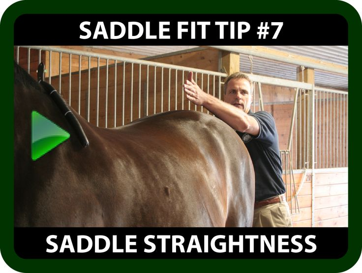 "Schleese Saddle Fit Tip #7 Saddle Straightness  Ask yourself...  Do you often have to step into one stirrup while riding in order to center your saddle on your horse's back?  If you answered ""yes"" to the above question, you may be faced with a Saddle Straightness issue. Watch this informative video for some saddle fit tips on ""Saddle Straightness"" !  https://youtu.be/_W2p_j_s3jY?list=PLA35A02DBF310BB9D"
