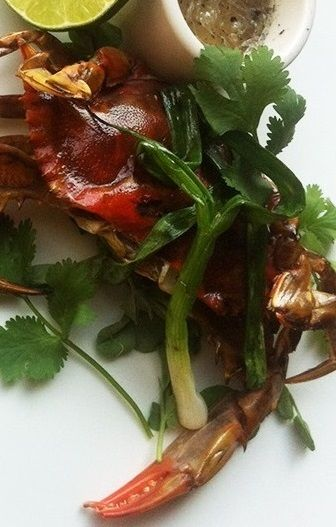 images about Crab on Pinterest | Soft Shell Crab, Crabs and Swimmers ...