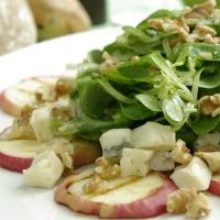 heerlijk voorgerecht van Olmenhorst appels en kaas met salade
