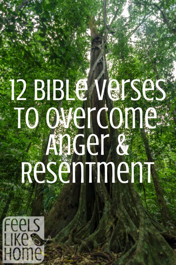 12 Bible verses to overcome anger and resentment