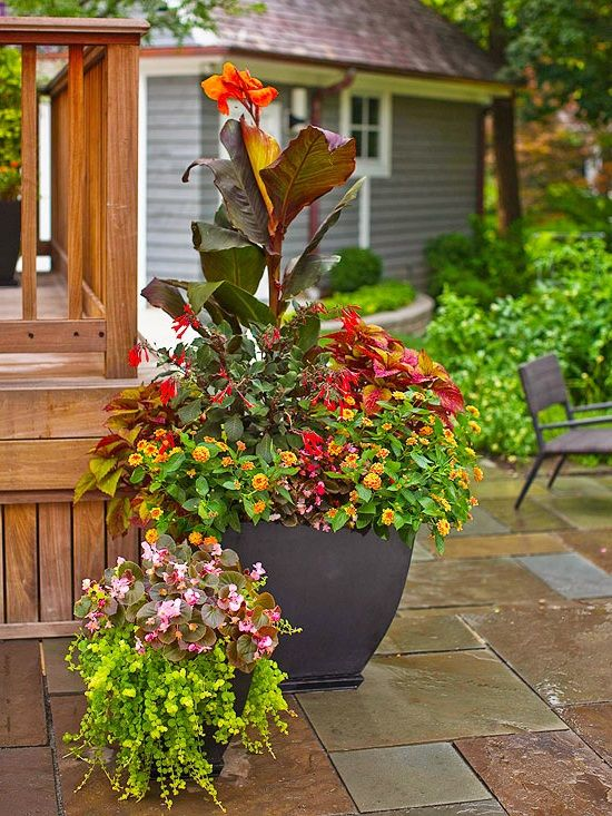 Patio design – Use plant containers for color and height