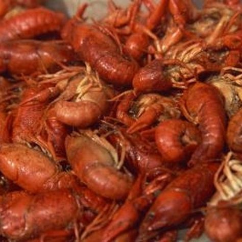 EHow: how to freeze and thaw live crawfish