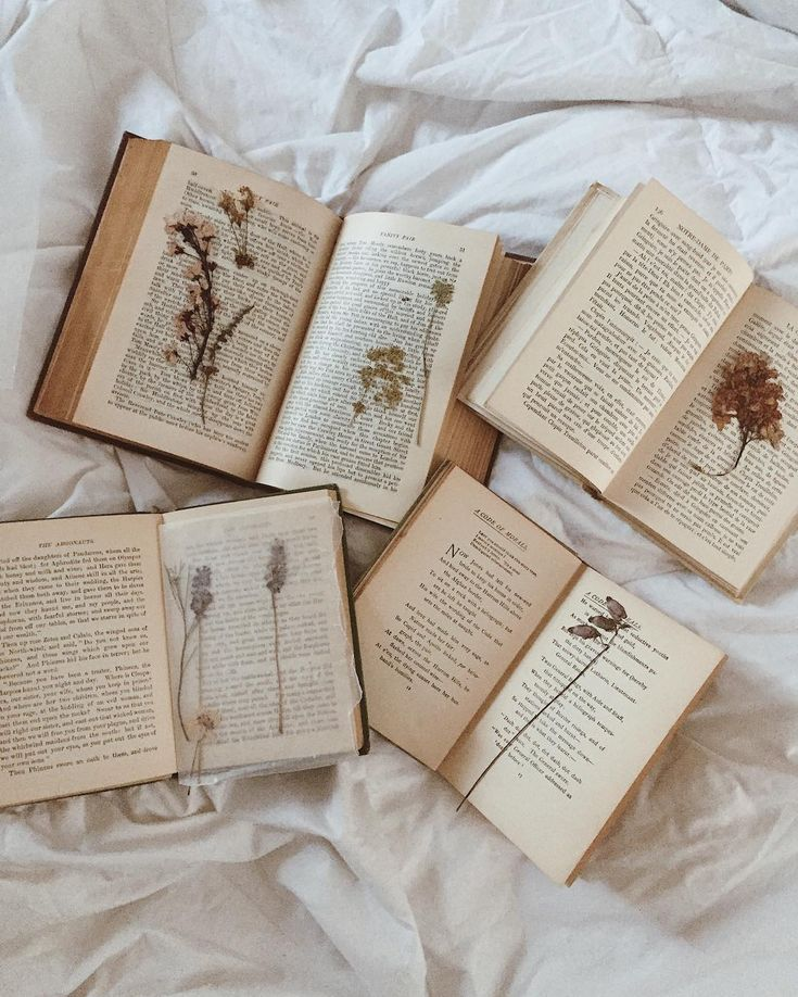 Vintage books and pressed flowers