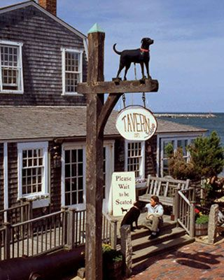 The Black Dog Tavern on Martha's Vineyard Spent many delicious hours there in 1974!!