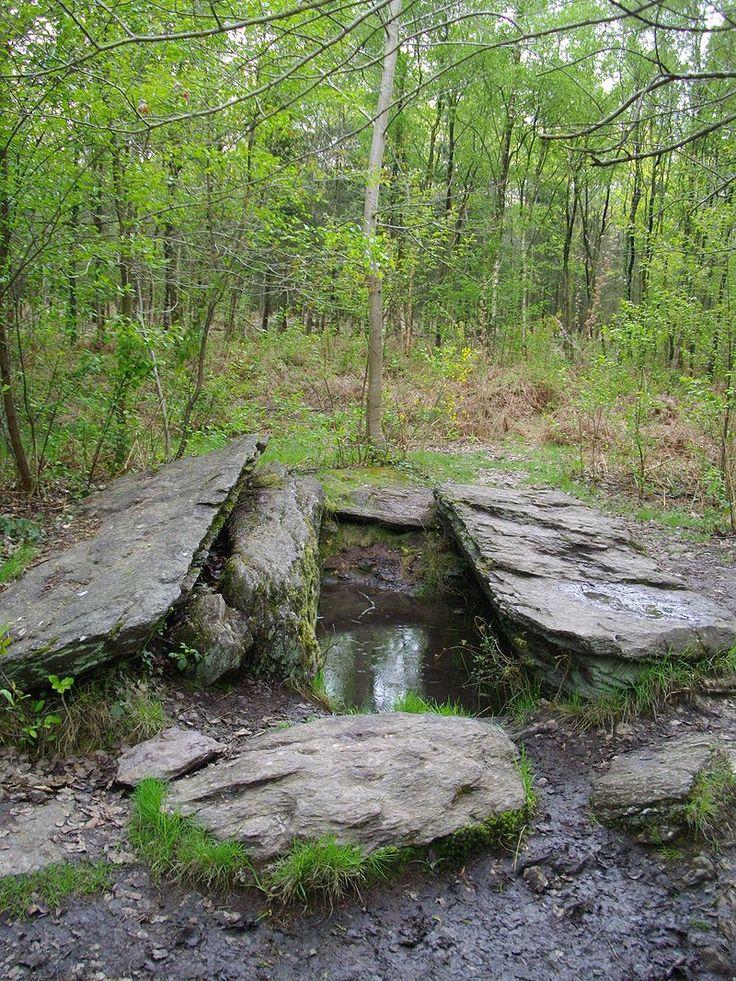 Tombeau du Géant Brocéliande  Forêt de Paimpont                                                                                                                                                     Plus