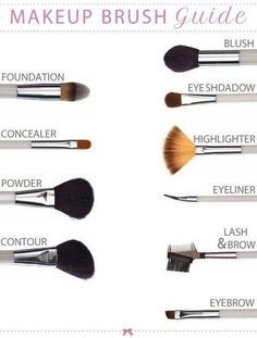 Makup Brush Guide Pictures, Photos, and Images for Facebook, Tumblr, Pinterest, and Twitter