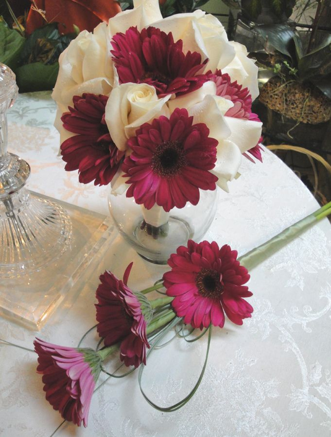 plum colored daisies with white roses