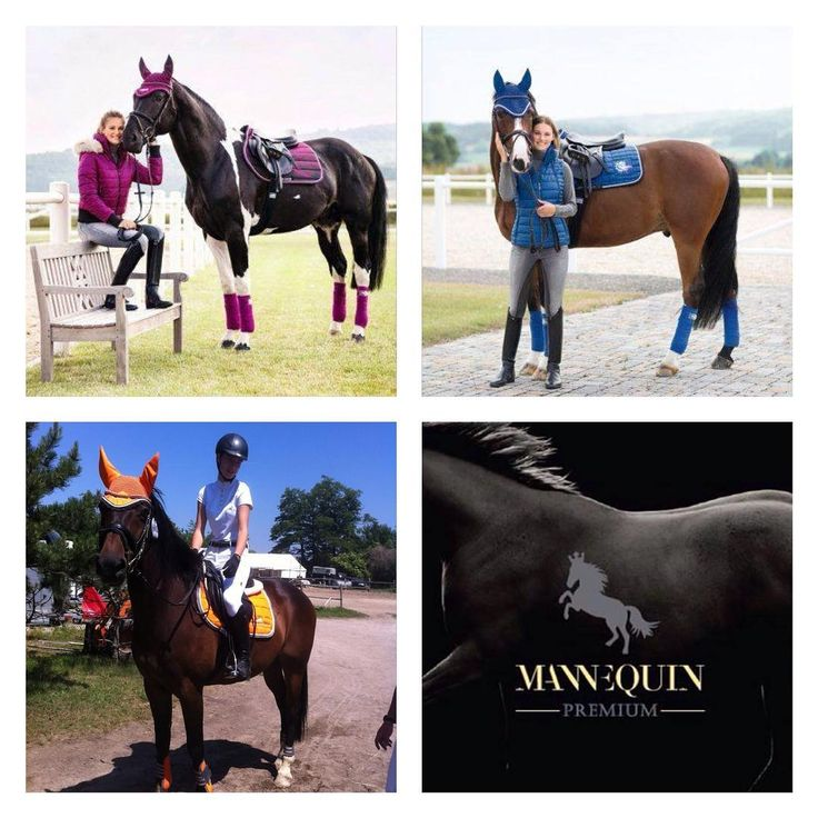 ... discover varieties of colors at mannEQUIn. #discover #colors #schockemöhle #kingsland #lauriagarrelli #cavallinomarino #hkm #hvpolo #imperialriding #equestrian #horse #horsebackriding #mannequin #trencin #slovakia
