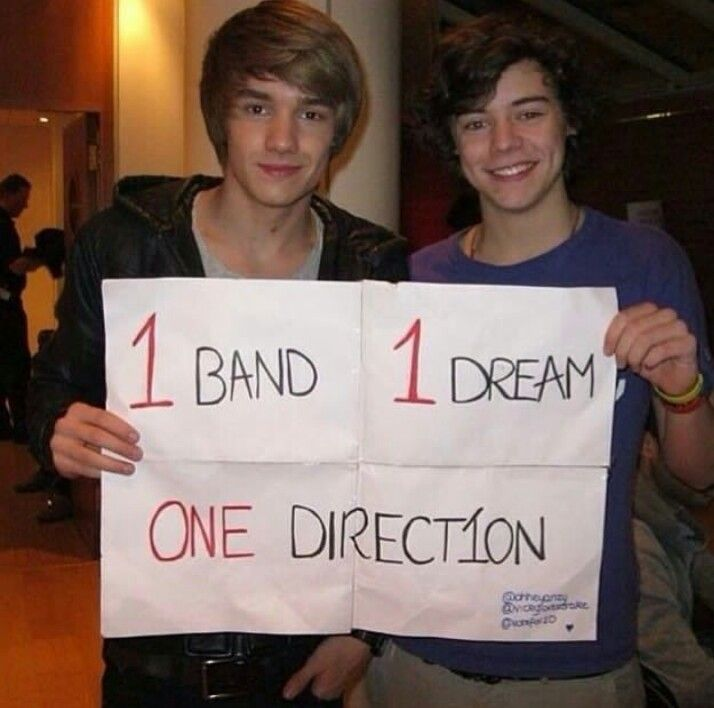 1 band, 1 dream, ONE DIRECTION
