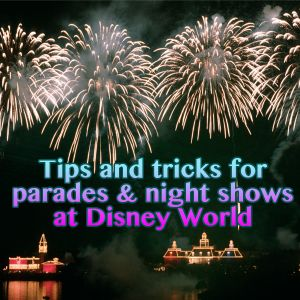 Tips and tricks for parades and nighttime shows at Disney World - PREP064