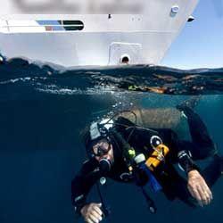 Comment éviter les hélices de bateaux ?