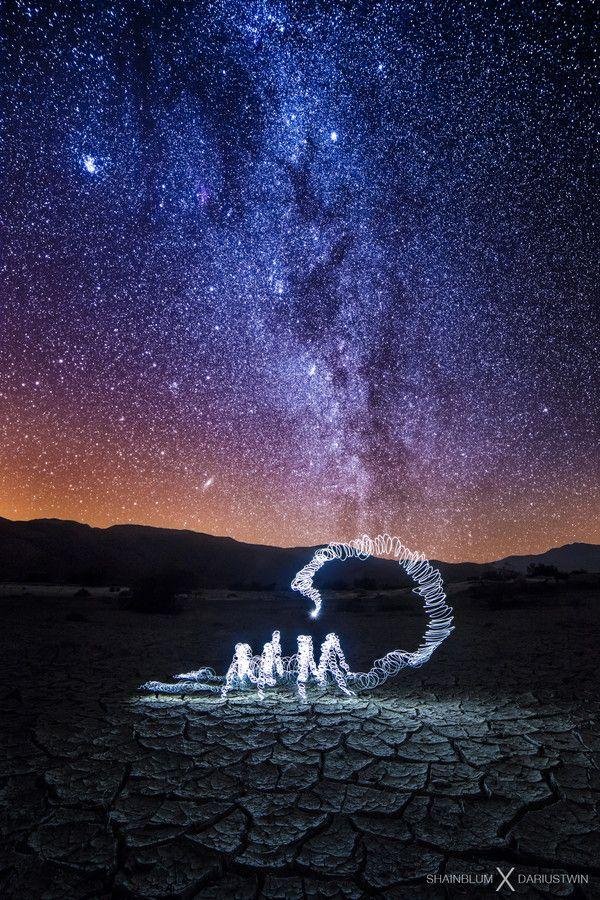 Star Stinger by Michael Shainblum