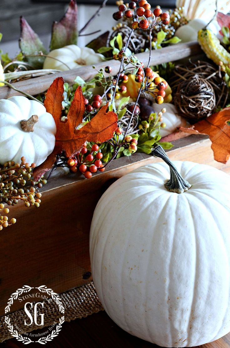 Totally going with the bittersweet and white pumpkins ~ great ideas in this post! 10 FABULOUS FALL ELEMENTS TO USE IN YOUR HOME