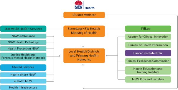 Nsw Health Structure