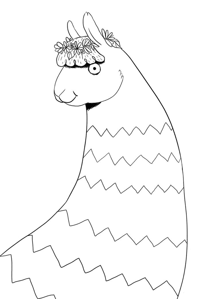 Animals in Hats! (Colouring Book) on Behance