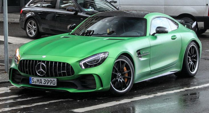 Beast Of Green Hell Escapes Natural Habitat, Enters Berlin Streets
