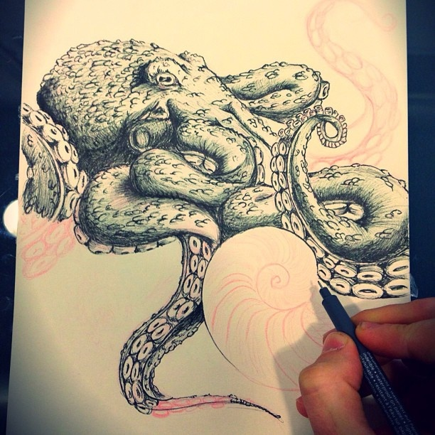 Octopus sketch by a tattoo artist.
