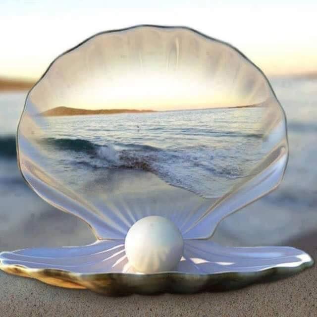 Citaten Over De Zee : Beste afbeeldingen over citaten en inzichten op