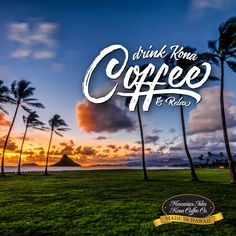You have GOT to try the Sips & Sarcasm Hawaiian Kona Coffee Blend!  It has the unique flavor and aroma of the Hawaiian Kona Coffee and we blend it with premium Arabica beans from both Central and South American to create an absolutely brilliant brew!   https://theshelvinshop.com/products/hawaiian-kona-coffee-blend