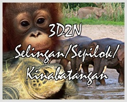 Sandakan Wildlife Bonanza Tour | Borneo Attractions Holiday