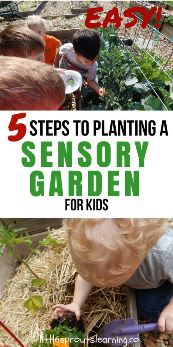 What Could Be More Fun Than A Sensory Garden For Kids Kids Need Sensory Stimulation For Development Plant Sensory Garden Gardening For Kids Planting For Kids