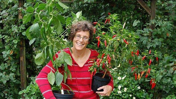 Hur gick det för chiliplantorna - Lottas trädgård tillbaka i P4 Extra - P4 Extra | Sveriges Radio