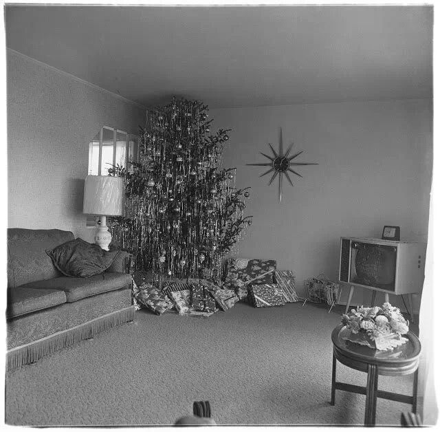 Long Island Christmas Tree Farms