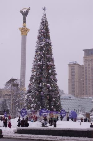Celebrate Christmas in Ukraine: Christmas Tree in Kiev