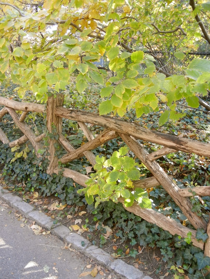 rustic fences images | About New York: Central Park