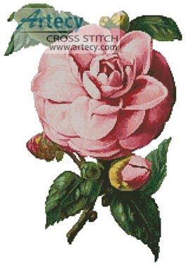 Camellia 6 Counted Cross Stitch Pattern http://www.artecyshop.com/index.php?main_page=product_info&cPath=37_39&products_id=1314