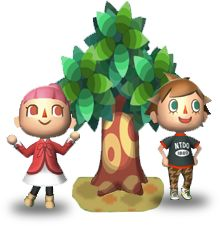 tanabata animal crossing new leaf