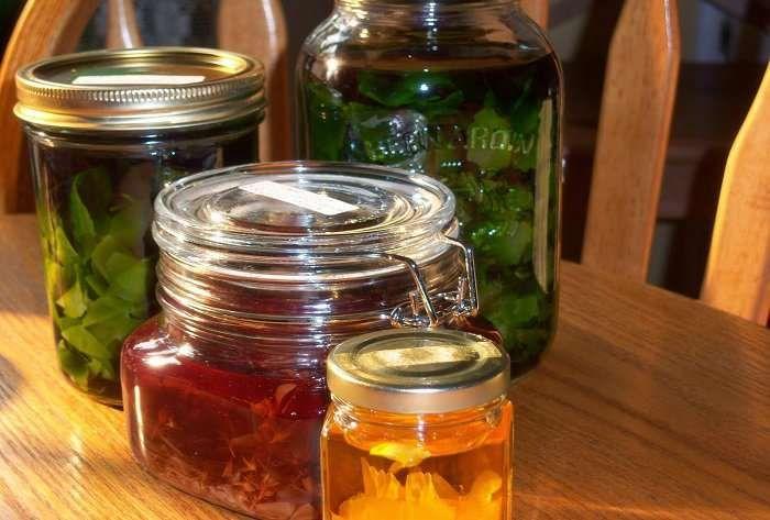 Σωστή παρασκευή γιατρικών από βότανα. χρησιμοποιείτε τα βότανα υπό την επίβλεψη ενός ειδικού ιατρού και ειδικά όταν λαμβάνετε ταυτόχρονα άλλα φάρμακα βότανα