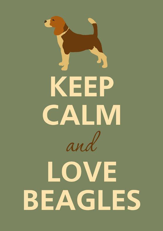 Gardez votre calme et adore les beagles par KCalmGallery sur Etsy