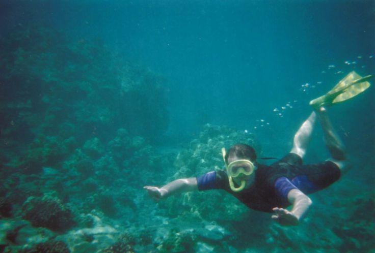 USA, Snorkeling, Big Island, Hawaii