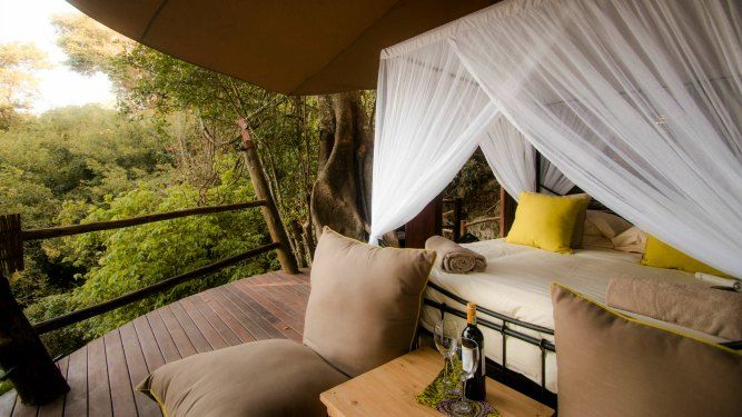 Rubondo Island Camp, Lake Victoria - TANZANIA. At this unique camp, you can go chimpanzee trekking, see forest elephant and fall asleep in their unique treehouse suite, black-and-white, fuzzy-tailed colobus monkeys leaping balletically from branch to branch.