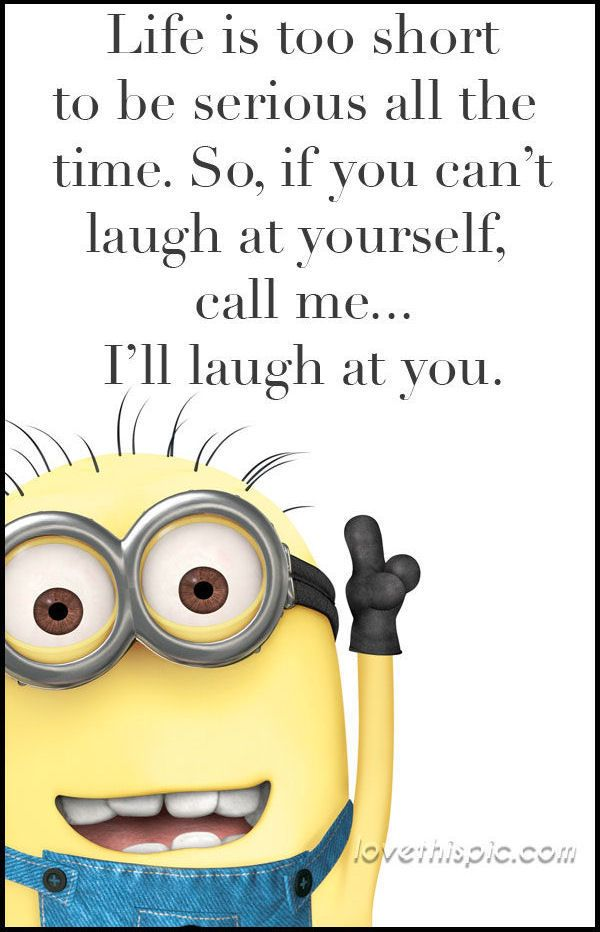 1000+ Short Funny Quotes On Pinterest