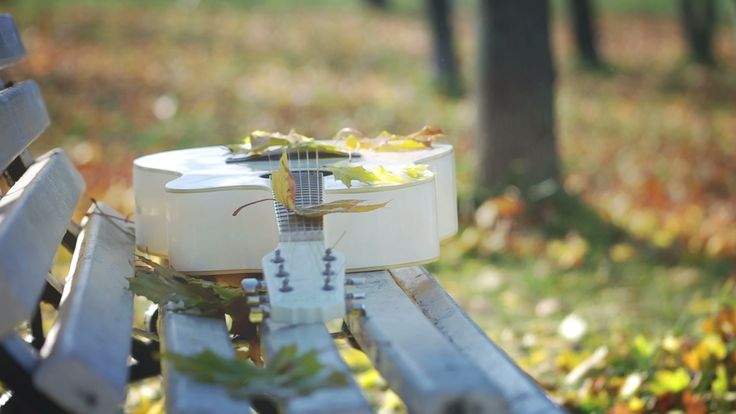 Guitar in Autumn Park by TS_media, Falltime melody footage, Golden Season