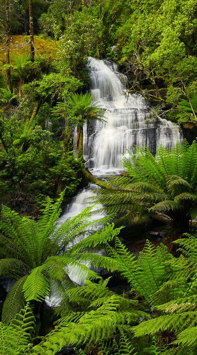 Triplet Falls, Otways, Victoria, Australia