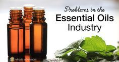 Did you know that the essential oils industry has a dark side? Here's the problems in the essential oils industry that I found in all my research.