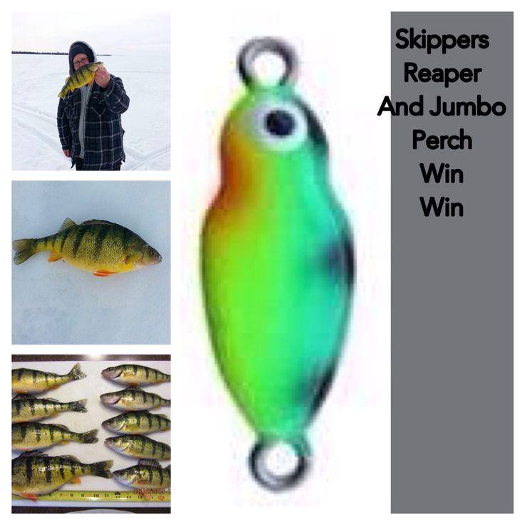 Ice fishing with Skippers Reaper is going to fill your bucket www.skipperstacklebox.com