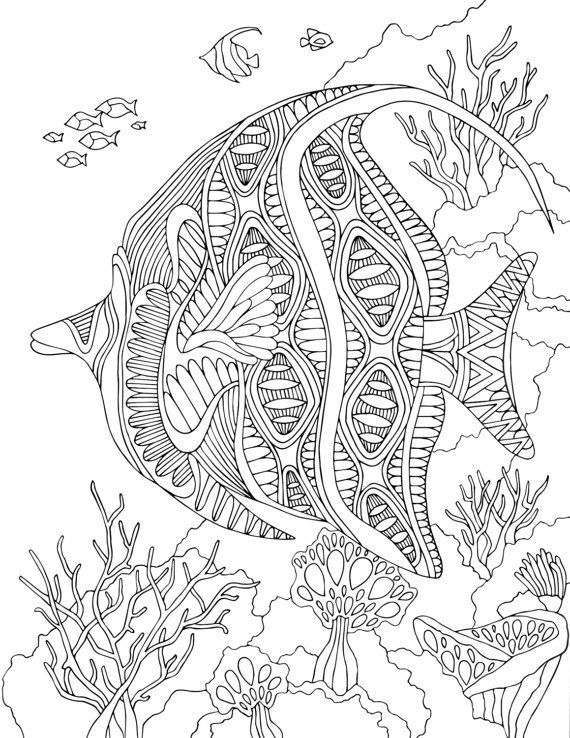 Angelfish Printable Coloring Page Von GNMPrintableColoring Auf Etsy