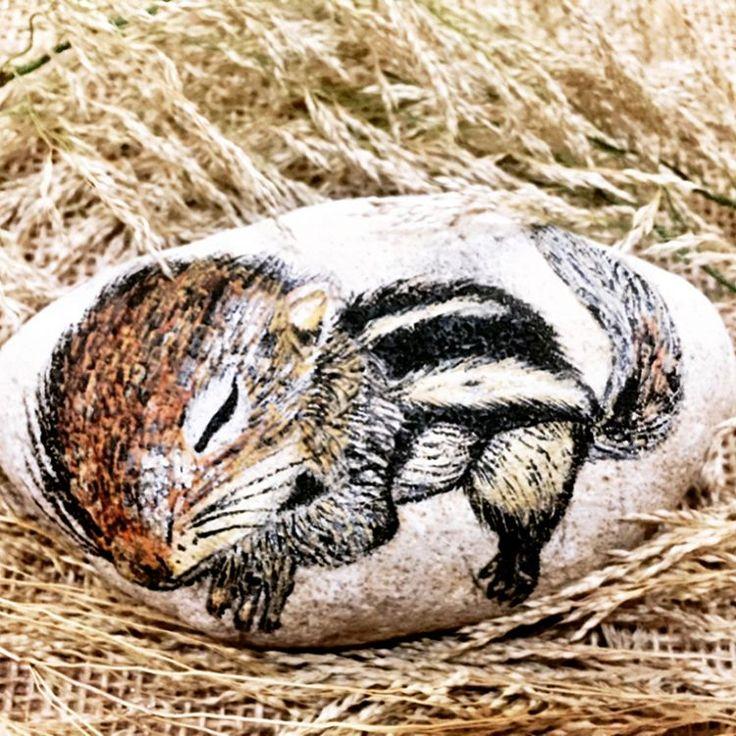 Baby squirrel 🐿💤 赤ちゃんリス🐿はただいま お昼寝中です!🌲🐿🌿 2枚目にはシャドーボックスフレームに入りました🐿 ・ ・ #ストーンペイント #りす #野生動物 #石 #お昼寝 #可愛い動物 #可愛い #手描き #手描きアート #アクリル絵具 #石絵 #リス #rockpaintingart #stone #stonepainting #squirrel #babyanimal #cuteanimals #wildanimal #handpainted #acrylic