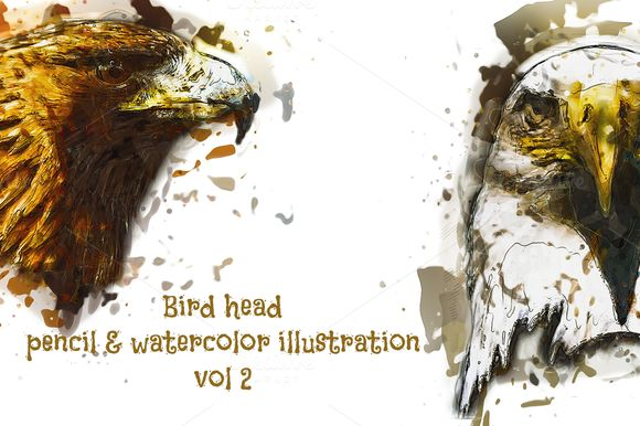 Bird Head Pencil & Watercolor vol 2 by wopras on @creativemarket